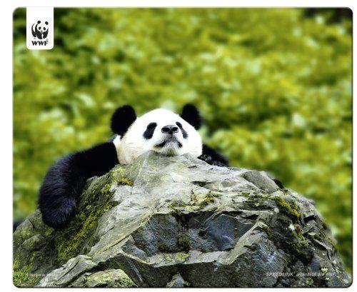 Speedlink (B-WARE) Terra WWF Mauspad Panda (Sie unterstützen WWF Deutschland mit 50Cent pro gekauftem Exemplar, verschiedene Motive)